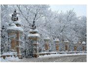 Санкт-Петербург – центр российского образования и просвещения