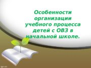 Особенности организации учебного процесса детей с ОВЗ в