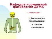 Тема лекции:  Физиология пищеварения  в