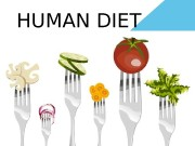 HUMAN DIET  diet — a set of