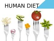 HUMAN DIET  diet — a set of