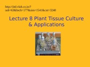 Презентация plant tissue culture and applications
