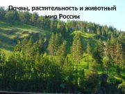 Почвы, растительность и животный мир России  Общие