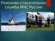 Поисково-спасательная служба МЧС России  Общие положения
