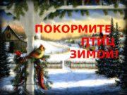 ПОКОРМИТЕ  ПТИЦ  ЗИМОЙ! 1  ВОРОБЕЙ