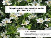 Покрытосеменные, или цветковые  растения (часть 2)