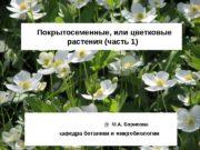 Покрытосеменные, или цветковые  растения (часть 1)