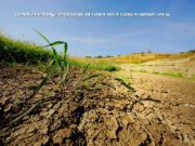 Полевые методы определения типов почв таёжно-лесной зоны