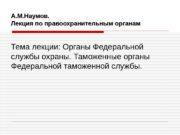 А. М. Наумов. Лекция по правоохранительным органам Тема
