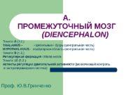 А. ПРОМЕЖУТОЧНЫЙ МОЗГ    ( DIENCEPHALON)