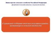 Презентация prezent grant podderzh
