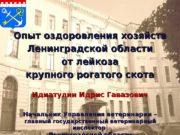 Опыт оздоровления хозяйств Ленинградской области от лейкоза крупного