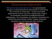 Презентация Презентация на тему «Технология spyware» Крошкин И.Н.