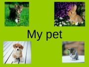 Презентация призентация My pet