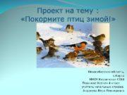 Новосибирская область, с. Кирза МКОУ Кирзинская СОШ
