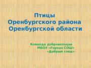 Птицы Оренбургского района Оренбургской области Команда добровольцев