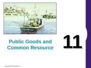 Презентация public goods 11