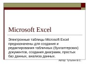 Презентация pwpt.ru elektronnaya tablitsa excel