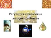 Регуляция и патология липидного обмена  NADH +