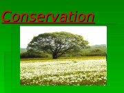 Conservation  As you see conservation – is
