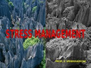 Презентация Ринат 20081016 STRESS MANAGEMENT