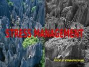 Презентация Ринат 20081016 STRESS MANAGEMENT