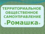 ТЕРРИТОРИАЛЬНОЕ ОБЩЕСТВЕННОЕ САМОУПРАВЛЕНИЕ  « Ромашка » 01