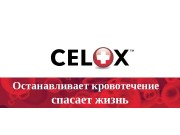Презентация Селокс для конференции август