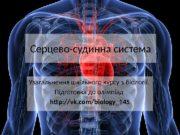 Серцево-судинна система Узагальнення шкільного курсу з біології.
