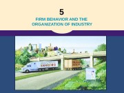 5  FIRM BEHAVIOR AND THE ORGANIZATION OF