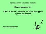 Презентация Системы ведения обрезка и нагрузка