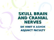 SKULL BRAIN AND CRANIAL NERVES DR VINIT K