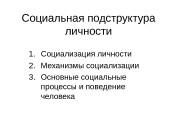 Социальная подструктура личности 1. Социализация личности 2. Механизмы