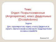 Тема: Отдел: Покрытосеменные  (Angiospermae), класс Двудольные (Dicotyledones)