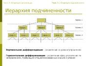 Иерархия подчиненности Горизонтальная дифференциация — разделение сфер управления