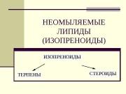 Презентация Терпены MINE