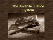 The Juvenile Justice System  Nineteenth Century Juvenile
