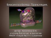 Биосинтез белка. Трансляция. автор:  Киселева О. Н.
