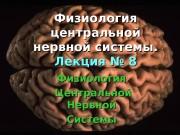 Физиология центральной нервной системы. Лекция №
