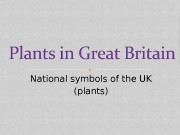 Презентация uk-national-plants