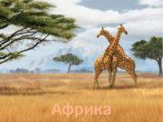 Африка  План описания географического положения материка