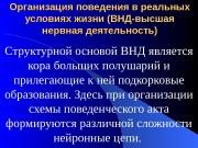 Организация поведения в реальных условиях жизни (ВНД-высшая нервная