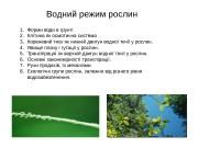 Презентация Водний режим new
