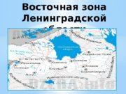 Восточная зона Ленинградской области  Тихвинский район