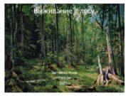 Выживание в лесу Антипова Анна 3 альфа 2017
