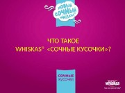 Презентация Whiskas Juicy bits Programm for training