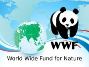 World Wide Fund for Nature  The World