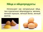 Презентация Яйца и яйцепродукты