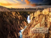 Презентация Yellowstone National Park