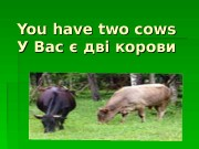 Презентация You have two cows